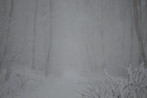 Javorina, zimná krajina